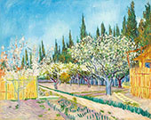 Orchard Bordered by Cypresses 1888 By Vincent van Gogh