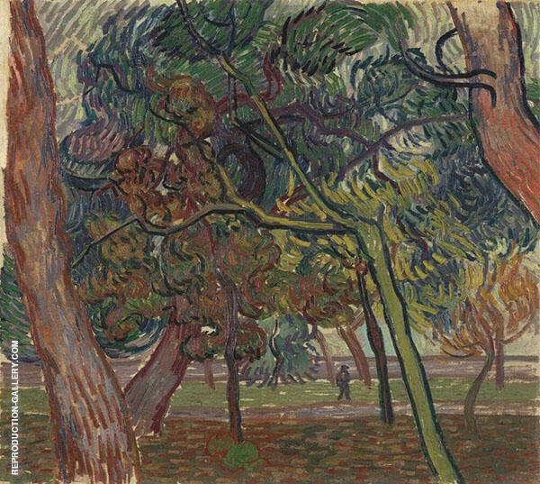 Pine Trees in The Garden of The Asylum 1889 Painting By Vincent van Gogh