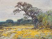 Coreopsis Near San Antonio Texas 1919 By Julian Onderdonk