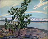Poplar Point Sturgeon Ba By J.E.H. MacDonald