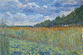 Cornfield 1914 By Jo Koster